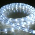 LED Rope Light Cool White