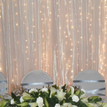 Curtain and Net Lights