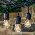 15W Filament Bulbs