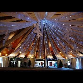 Cool White Fairy Light Rentals