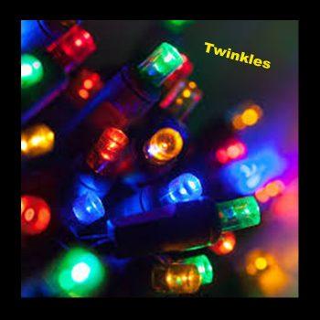 20m Rubber Coloured LED Fairy Lights