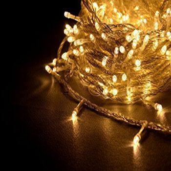 Twinkle Warm White Fairy Light Rentals